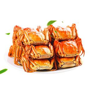 莲花岛 六月黄鲜活大闸蟹 2.0-1.6两 8只 38元包邮(138-100券)