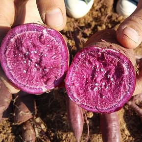 前3分钟# 兴庆旺 新鲜紫薯买4斤+1斤+3斤混装  19.9元包邮(买1送1)