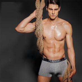 品质型男# 帕兰朵 纯色透气平角内裤 3条装 29元包邮(39-10券)