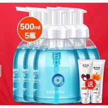 隆力奇 抑菌泡沫洗手液 500ml*5瓶 24.9元包邮(39.8-15券)