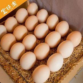 宜味淘 散养土家鸡蛋 20枚 18.9元包邮