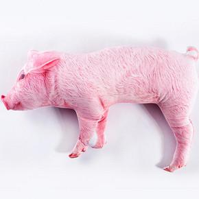 卡通个性猪头抱枕 15元包邮