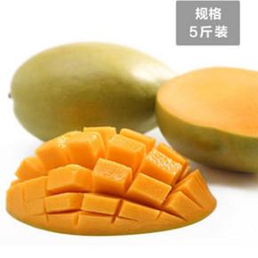 农果乐 攀枝花芒果  5斤 19.9元包邮