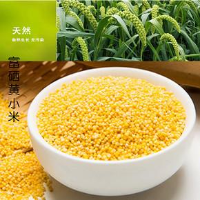 五谷杂粮黄小米 50g 1元包邮
