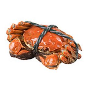 林康 太湖东山鲜活大闸蟹 全母8只装 79元包邮(199-120券)