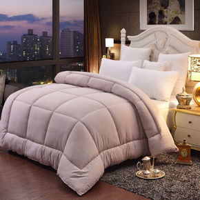 胜伟家纺 馨柔纯色纤丝双人保暖被芯冬被子  200*230cm 折94元(200-30)