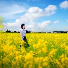 踏青的季节# 错峰出行 拥抱春天 哪些城市适合春季旅游?