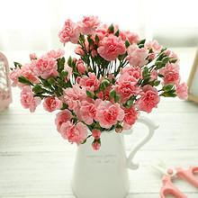 献给最爱的妈妈# 爱唯一 母亲节多头康乃馨花束 19.9元包邮(39.9-20券)