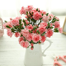 鲜花速递#觅可 多头小康乃馨花束 约18支  25.9元包邮(45.9-20券)