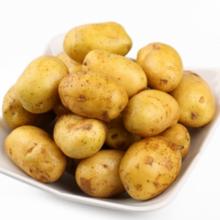 神农架 林区农家自种新鲜黄心土豆 5斤 9.9元包邮