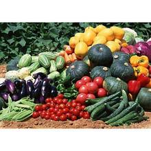 买买讨论会#如果你不差钱,你会买有机蔬菜吗?