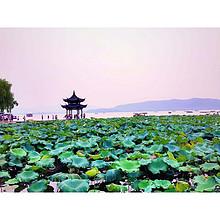 带你吃遍全中国# 美食系列——浙江  鱼米之乡的独特风味