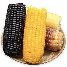 颗粒饱满# 东北黄白黑花甜软糯玉米棒150g*4  12.8元包邮(17.8-5券)
