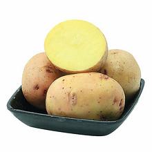 新鲜蔬菜# 十六御 云南现摘小土豆8斤 21.8元包邮(26.8-5券)