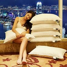 防螨抗菌#七星级酒店专用95%白鹅绒枕头羽绒枕芯 38元包邮(238-200券)
