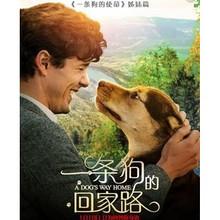 会员福利# 京东 《一条狗的回家路》  PLUS专享电影抵扣券