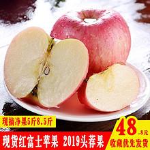 ¥26.8 陕西栖霞红富士苹果水果新鲜脆甜5当季8.5斤整箱包邮冰糖心非烟台