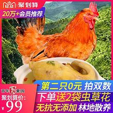 顺丰包邮【第二只0元】百年栗园大公鸡2斤*4支