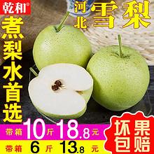 雪梨 雪花梨5斤10斤新鲜水果整箱梨子当季皇冠梨砀山酥梨香梨包邮 13.8元