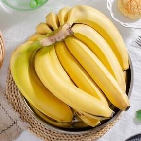 天猫 高山 香甜大蕉蕉 10斤 19.8元