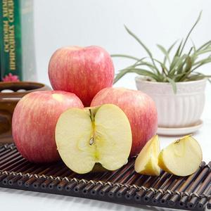 山东烟台栖霞红富士苹果5斤装
