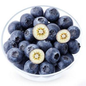 欢乐果园 智利进口新鲜蓝莓