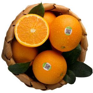 农夫山泉 17.5°橙