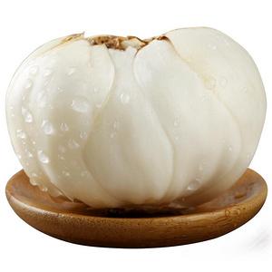 甘肃兰州新鲜甜百合500g